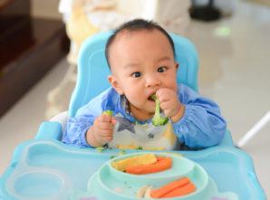 Método BLW na Introdução Alimentar