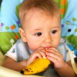 Como a introdução alimentar pode ajudar seu filho a mastigar bem os alimentos